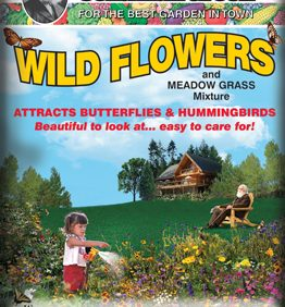 Wildflowers and Meadow Grass Mixture