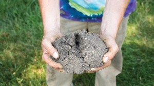 Soil Compaction Problems & Solutions