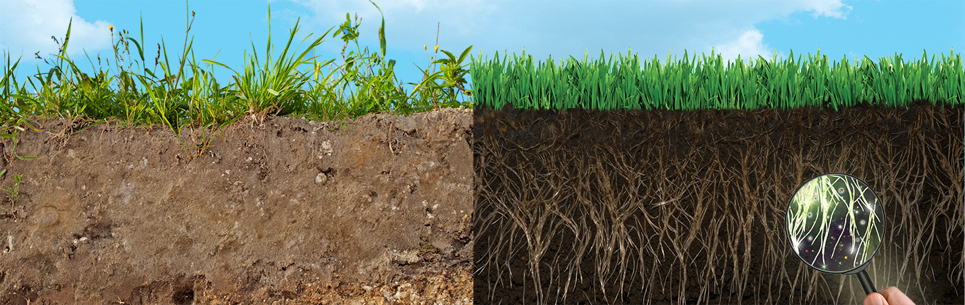 Soil compaction problems solutions jonathan green for Soil compaction