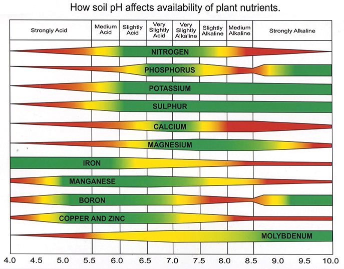 Importance Of Soil Ph | Soil Care | Jonathan Green