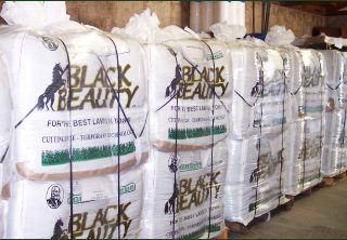 How do you buy good quality grass seed?