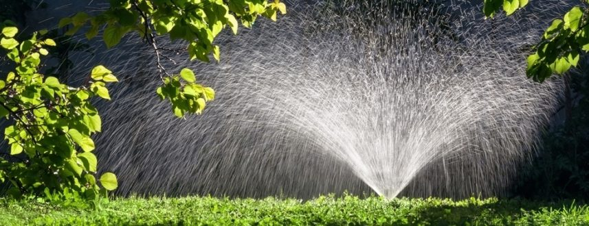 Lawn Watering Tips Jonathan Green
