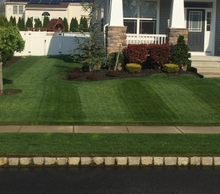 Show Your Lawn a Little RESPECT