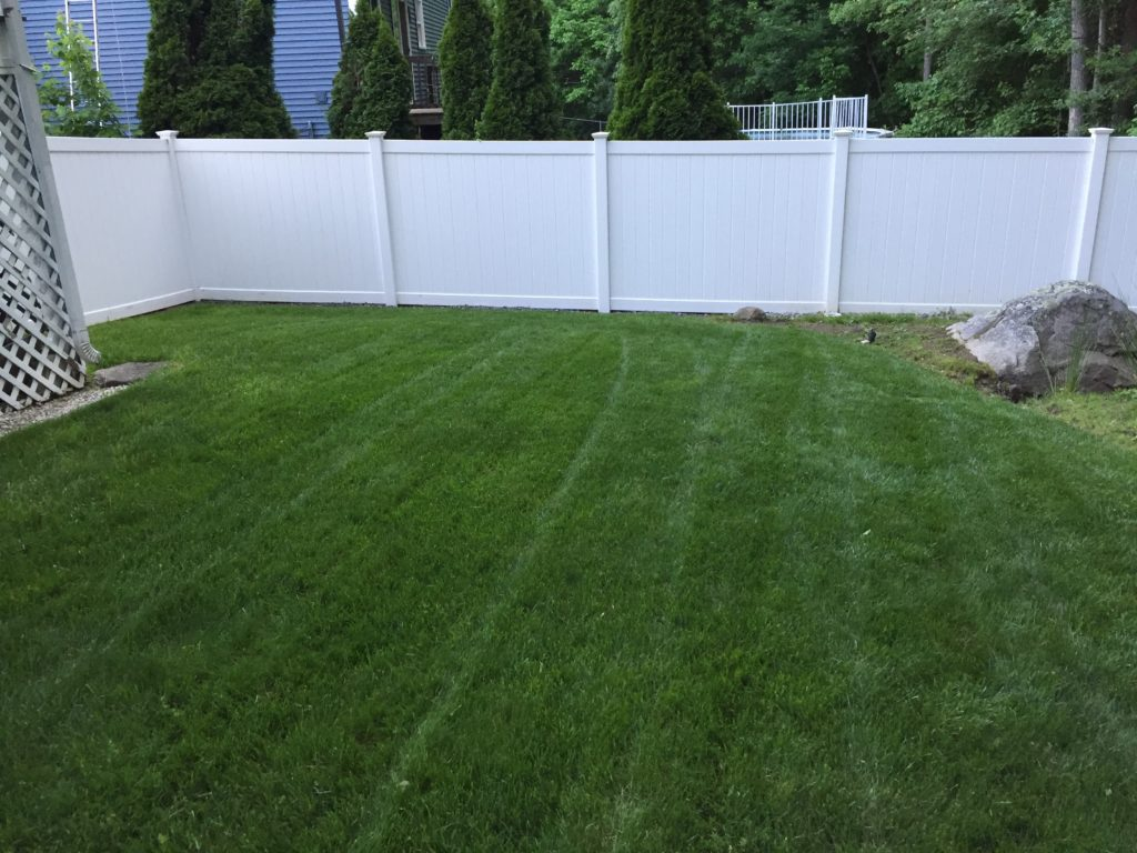 Quot Show Us Your Lawn Quot Winners Jonathan Green