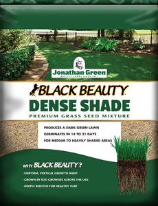Black Beauty® Dense Shade Mixture