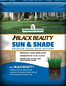 Black Beauty Sun Shade Jonathan Green
