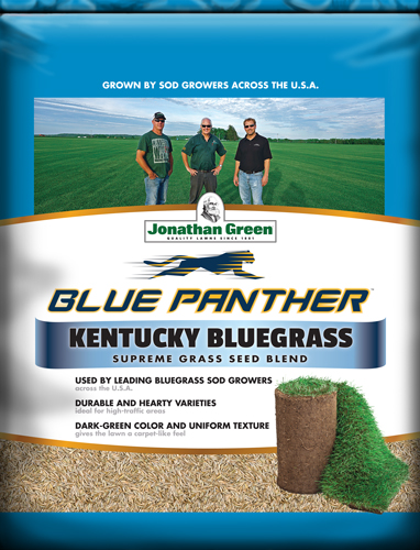 Blue Panther™ Kentucky Bluegrass Blend (formerly Sod Maker™)