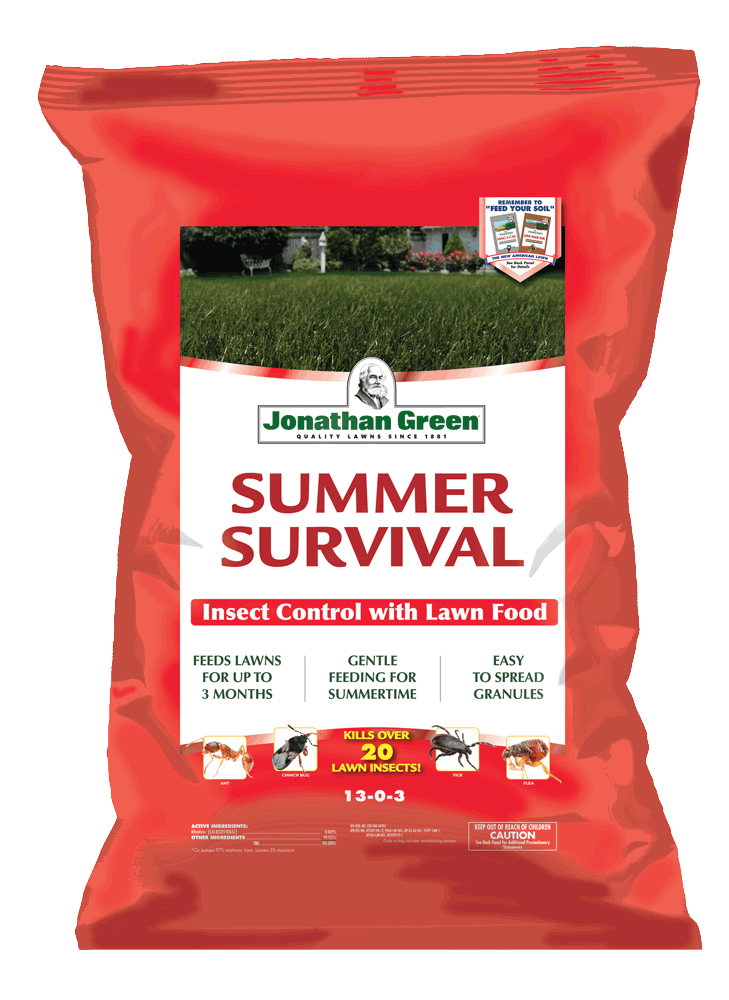 Summer-Survival