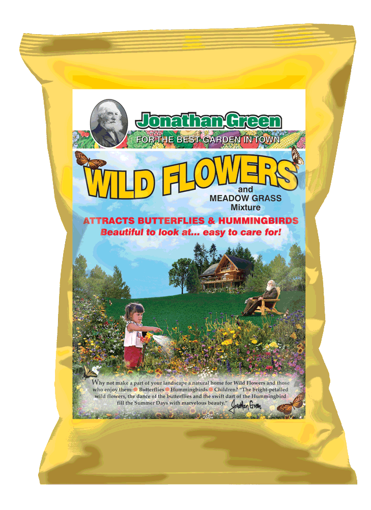 Wild-Flowers-and-Meadow-mix