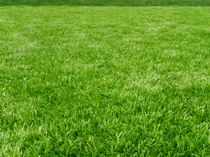 How To Fertilize A Lawn Jonathan Green