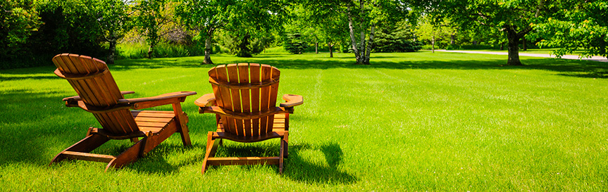 Best Lawn Fertilizer for Spring