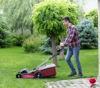 Mow, mow, mow your lawn….