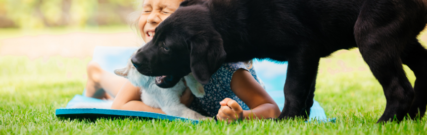 kid and dog playing on lawn