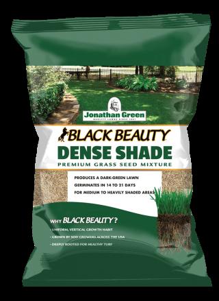 Black_Beauty_Dense_Shade_Grass_Seed_Bag