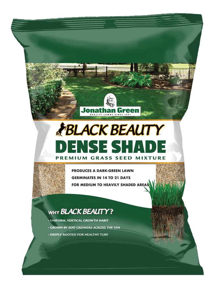 Front_of_Black_Beauty_Dense_Shade_Grass_Seed_Bag