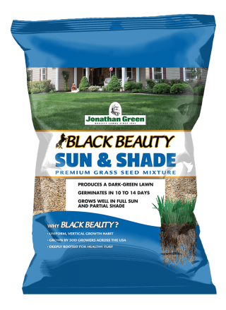 Black_Beauty_Sun_and_Shade_Grass_Seed_Front_of_Bag
