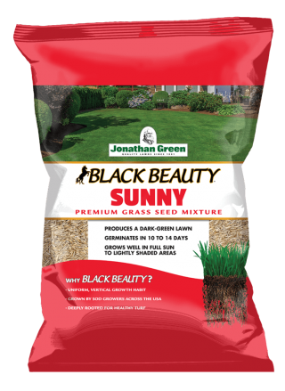Black_Beauty_Sunny_Grass_Seed_Front_of_Bag