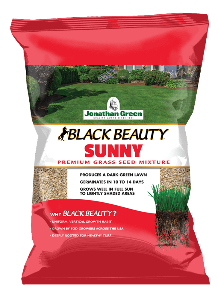 Front_of_Black_Beauty_Sunny_Grass_Seed_Bag