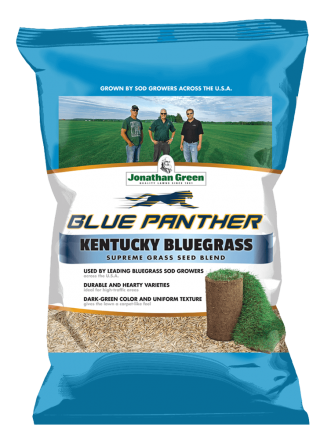 Blue_Panther_Grass_Seed_Front_of_Bag