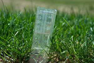 rain gauge inserted into lawn
