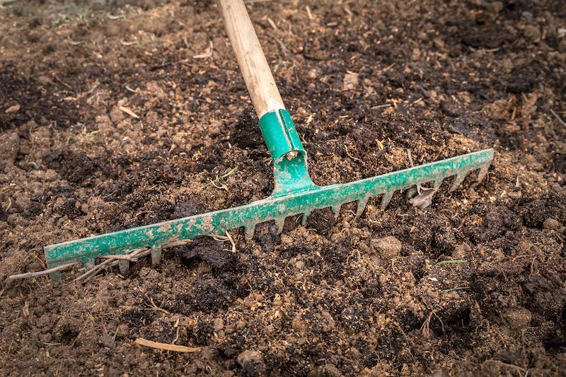 green rake laying in brown dirt