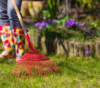person in rain boots rakes lawn