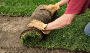turf_professional_rolling_out_sod