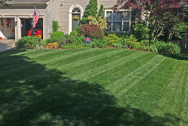 Show_Us_Your_Lawn_Contest_Winner-MD_Beautiful_Lawn