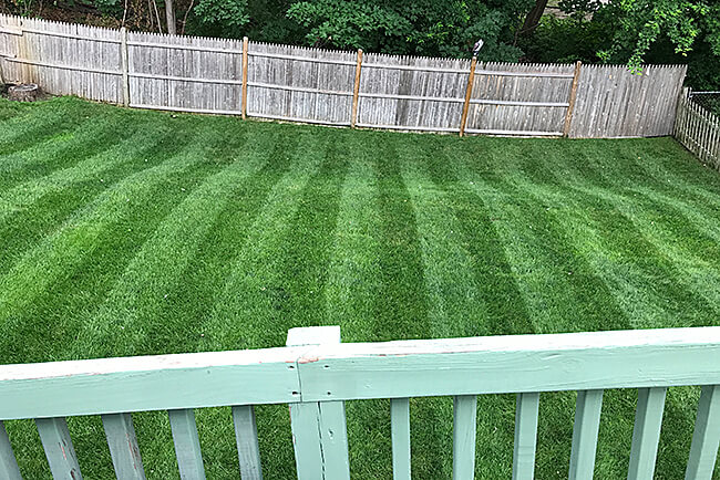 Show_Us_Your_Lawn_Contest_Winner-MA_Beautiful_Lawn